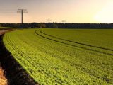 Bazı çiftçi borçları tarımsal destekten kesilecek