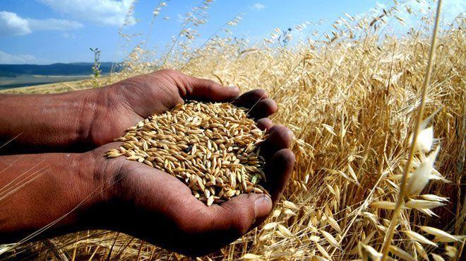 Tarımda verimsizlik maliyetleri artırıyor!